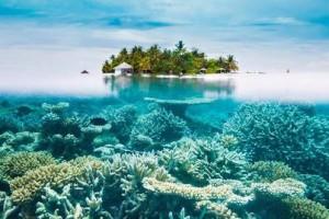 Maldives_Rustik_Travel