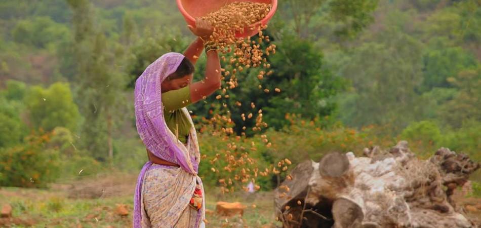 Dehna Village Experience