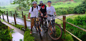 Cycling in Wayanad