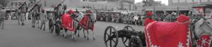 Rustik Travel Teej_Ganguar_Festival