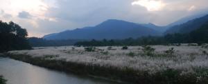 Sikkim_Rustik_Travel