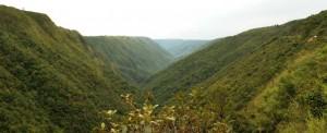 Meghalaya_Rustik_Travel