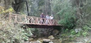 Bridge Arunachal Pradesh
