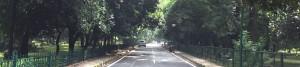 Bangalore Walking Tours_Rustik Travel
