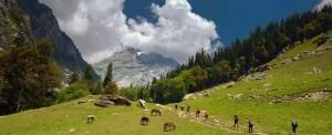 Hampta Pass_Rustik Travel