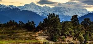 Chopta_Chandrashila_Rustik Travel
